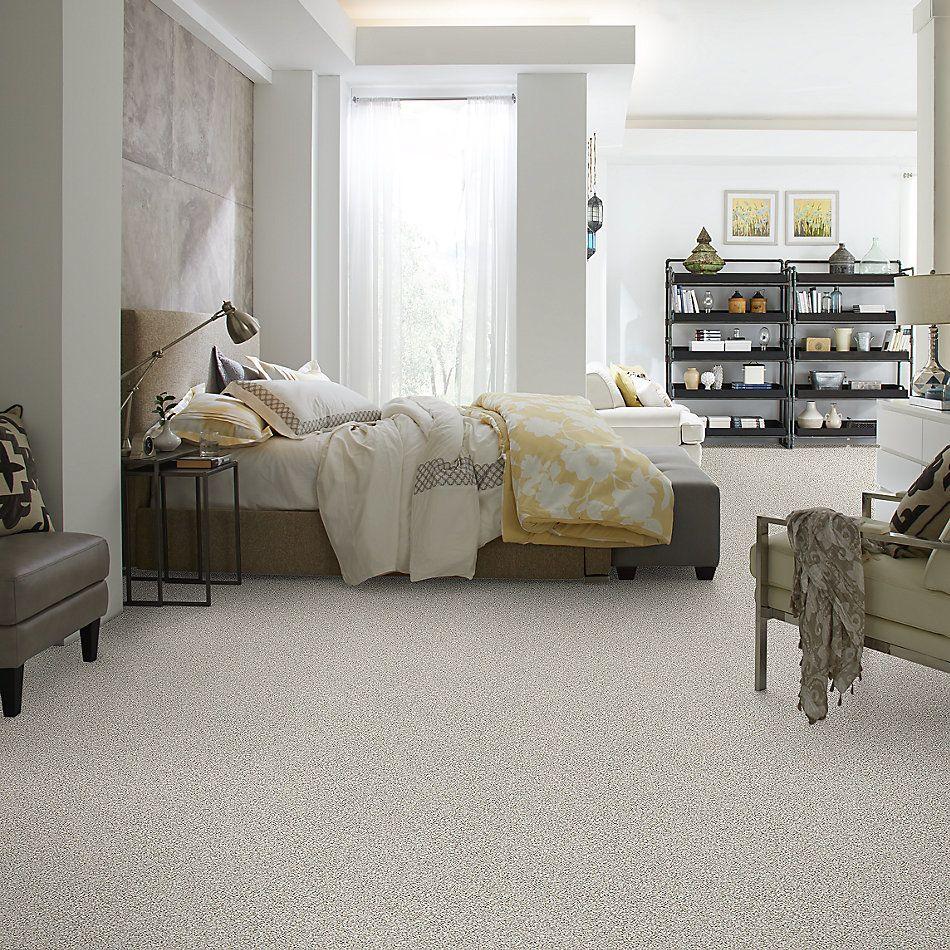 Shaw Floors Foundations Elemental Mix I Net Whitewash 00177_E9677