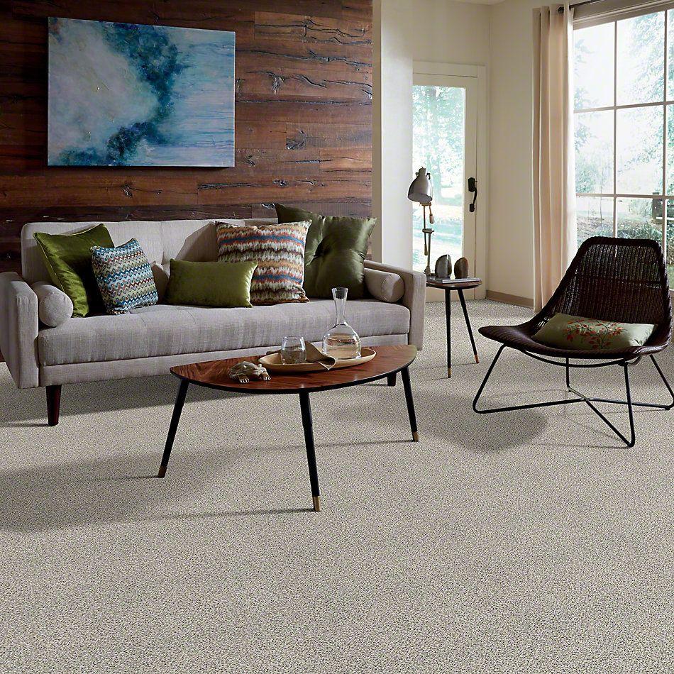 Shaw Floors Elemental Mix II Snowbound 00178_E9565