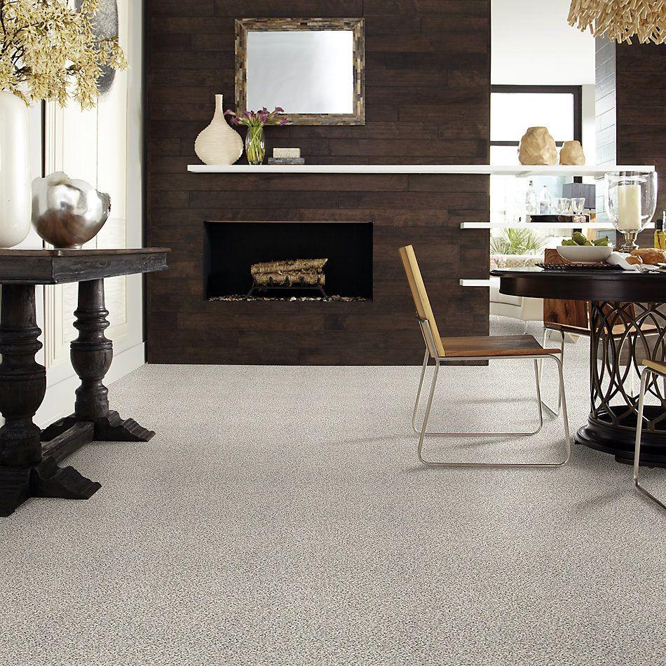 Shaw Floors Foundations Elemental Mix II Net Snowbound 00178_E9678