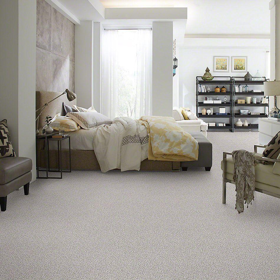 Shaw Floors SFA Our Home II Snowcap 00179_EA556