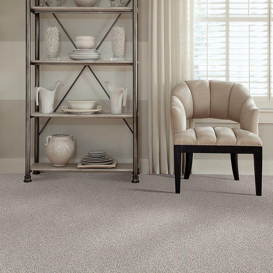 Shaw Floors Value Collections Platinum Texture Accents Net Carrara 00180_E9665