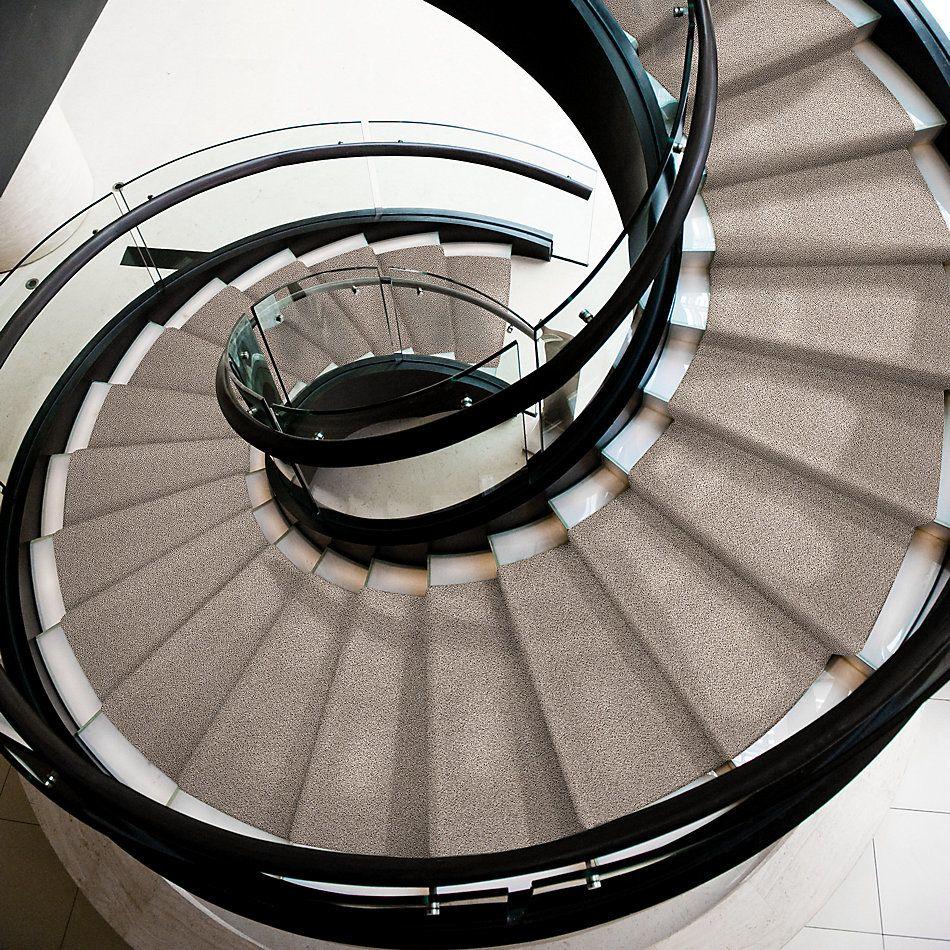 Shaw Floors Value Collections Platinum Texture Accents Net Sculptor 00181_E9665