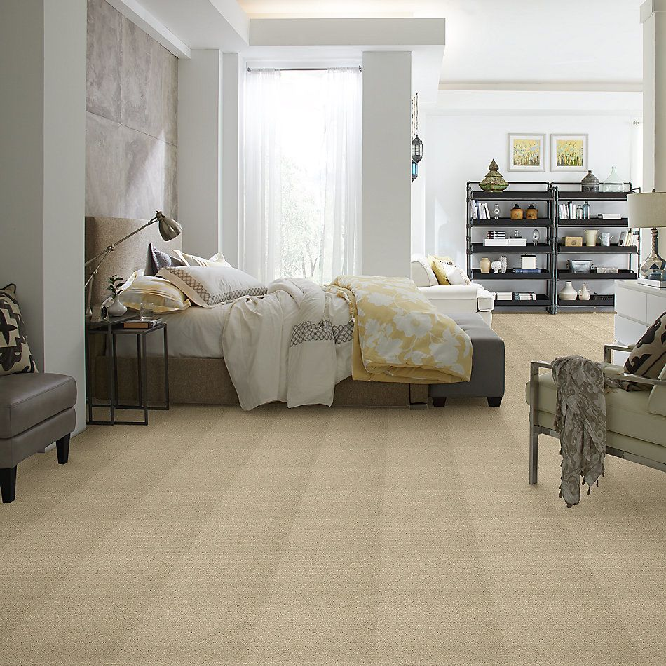 Shaw Floors Value Collections Complete Control Net Soft Honey 00182_E9775