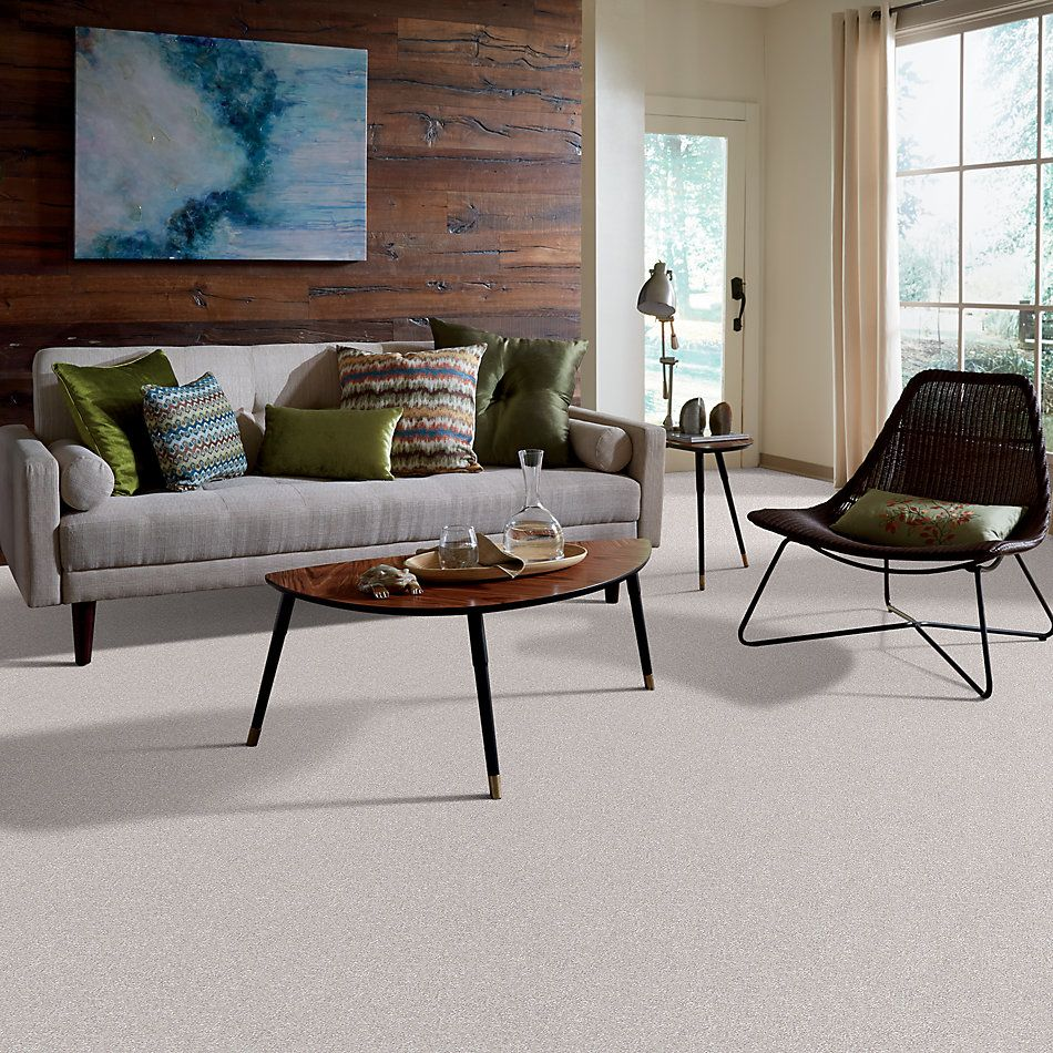 Shaw Floors Always On Time Realist 00196_NA456