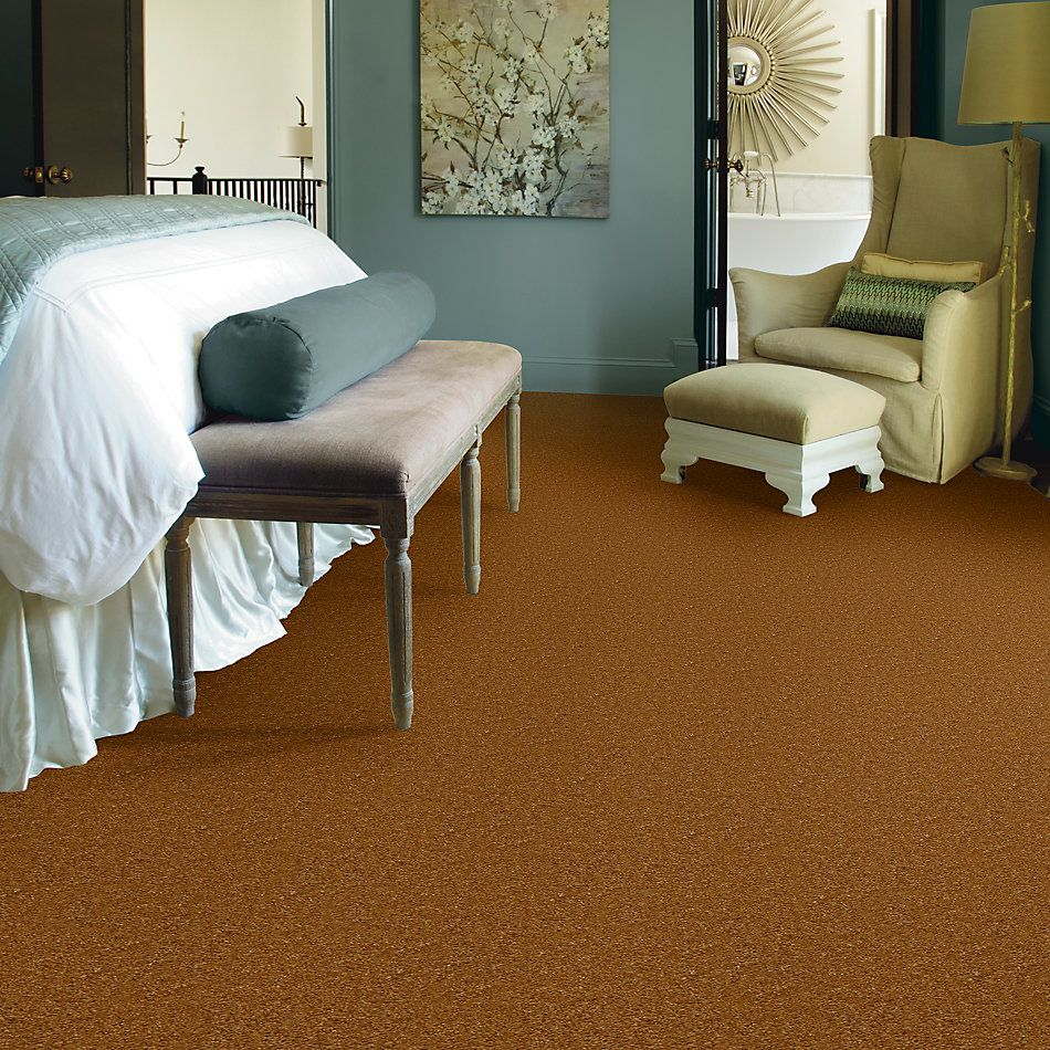 Shaw Floors SFA Flashy Golden Tint 00200_52E55