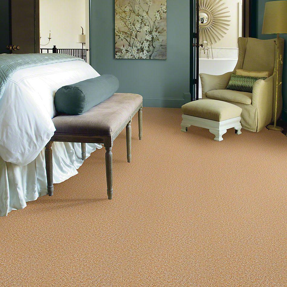 Shaw Floors Full Of Life Moonlit Path 00200_52N09