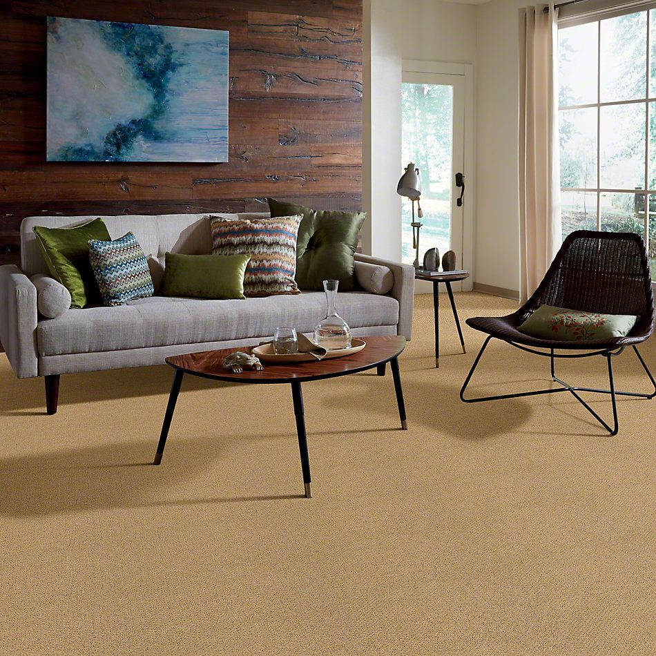 Shaw Floors Shaw Flooring Gallery Supreme Comfort Loop Sun Shower 00200_5469G