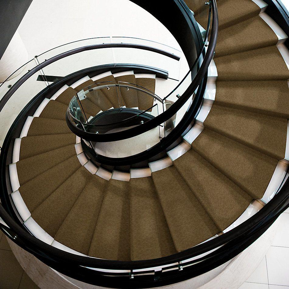 Shaw Floors Checks And Balances Ledger Asset 00200_54929