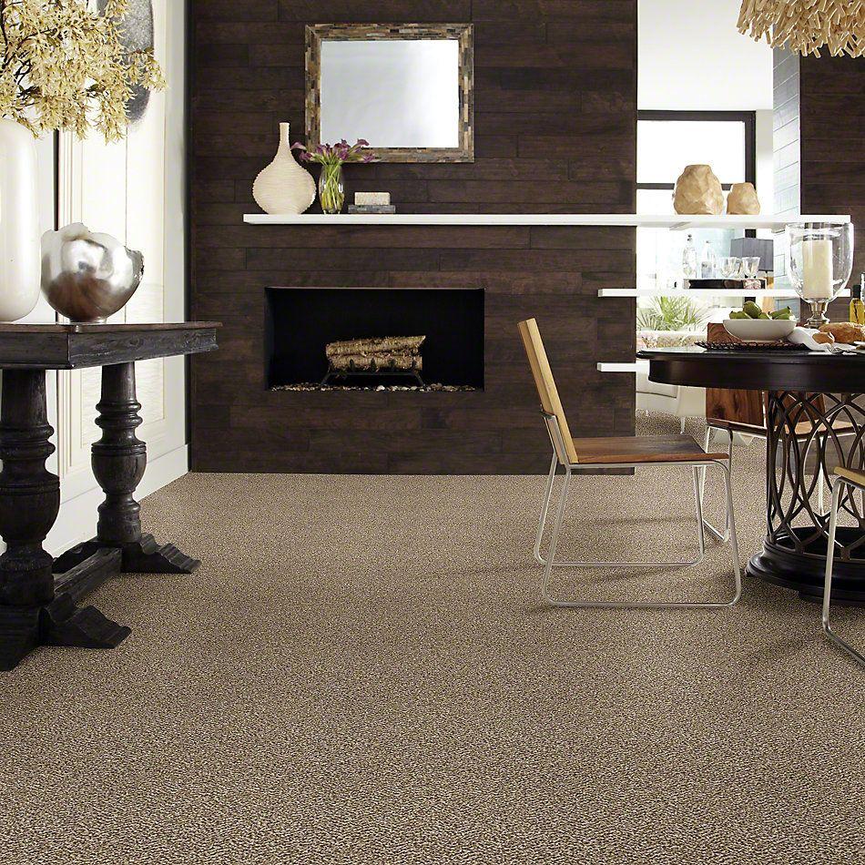 Shaw Floors Bellera Charmed Hues Net Honey Bear 00200_5E051
