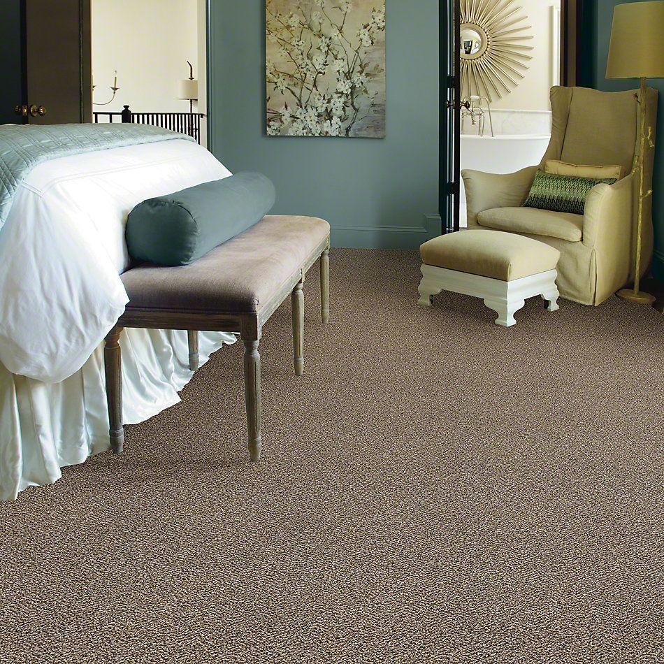 Shaw Floors All About It Net Honey Bear 00200_5E052