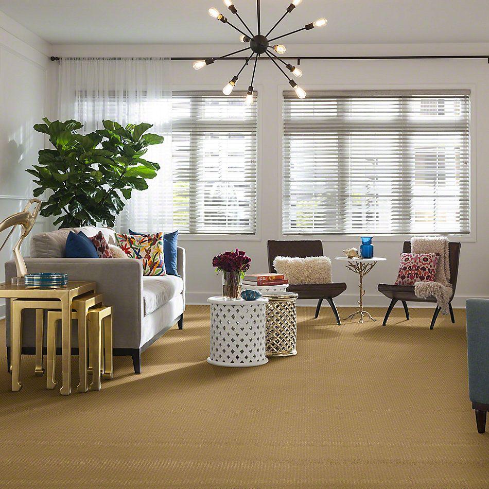 Shaw Floors Enduring Comfort Pattern Sun Shower 00200_E0404