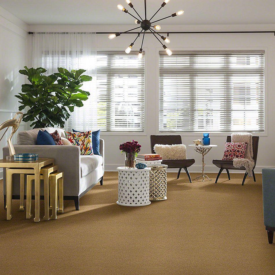 Shaw Floors Timeless Charm Loop Sun Shower 00200_E0405