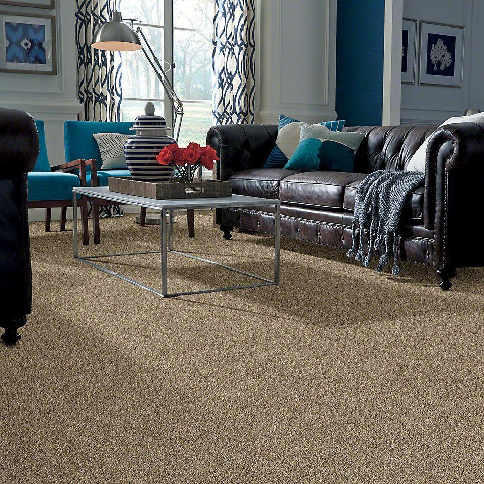 Shaw Floors Bellera Just A Hint II Gold Rush 00200_E9641