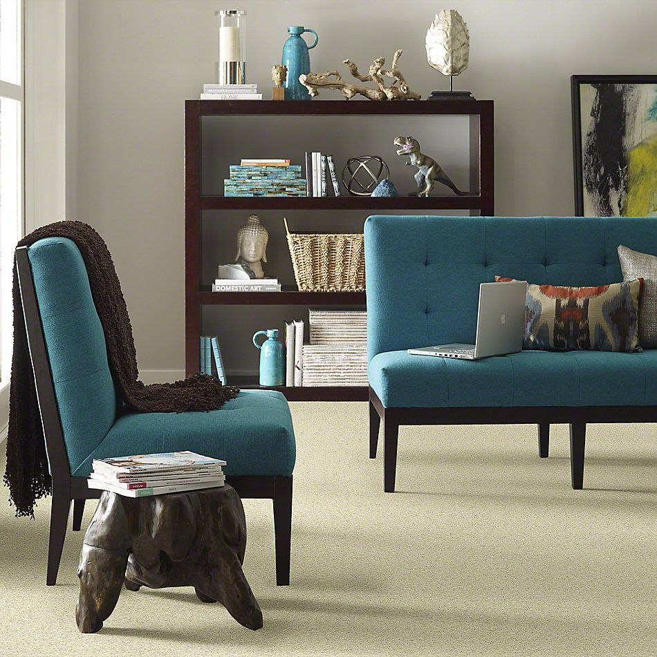 Shaw Floors Value Collections Keep Me I Net Cowhide 00200_E0817