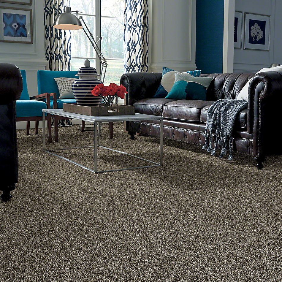 Shaw Floors Value Collections Because We Can I 12′ Net Muffin Top 00200_E9312