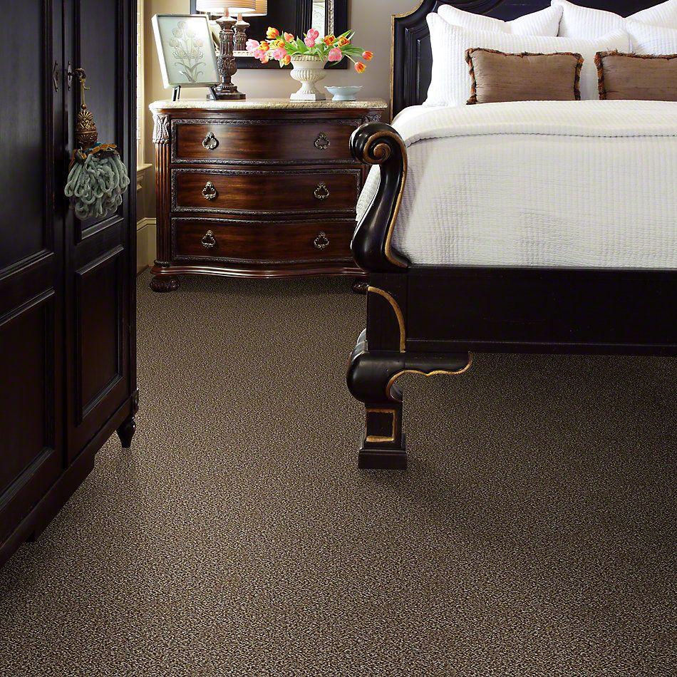 Shaw Floors Simply The Best Work The Color Honey Bear 00200_E9346