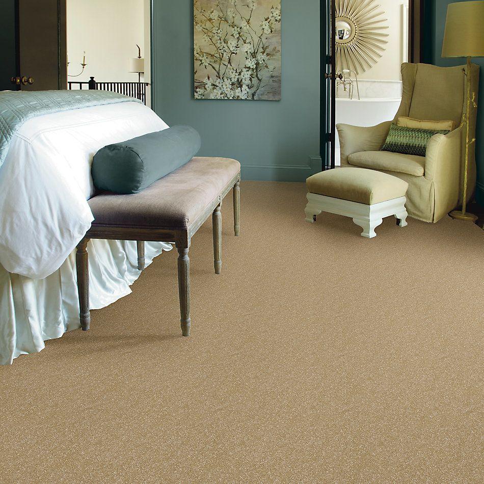 Shaw Floors Value Collections Passageway II 15 Net Butter 00200_E9621