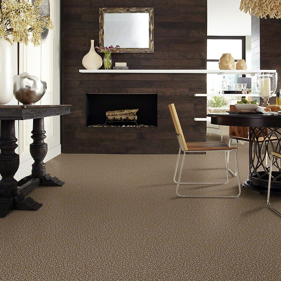 Shaw Floors Simply The Best Work the Color Honey Bear E9346_00200