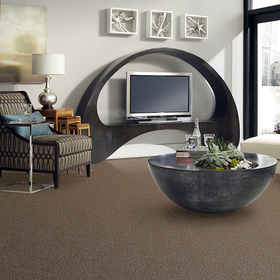 Shaw Floors Value Collections Breathe & Reflect Net Honey Bear 00200_EA720