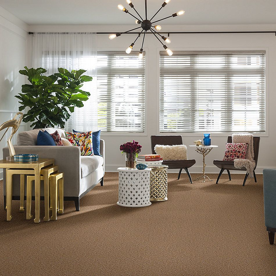 Shaw Floors Home Foundations Gold Yarrow Bay French Bread 00200_HGL38