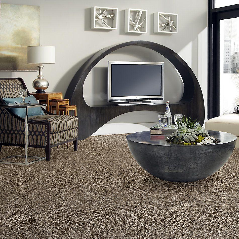 Shaw Floors Zuma Beach Honey Bear 00200_SNS47