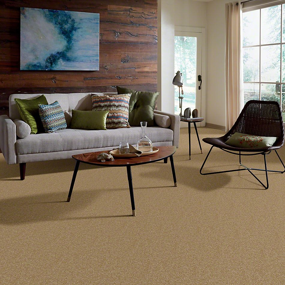 Shaw Floors Shaw Design Center Different Times III 12 Straw Hat 00201_5C496