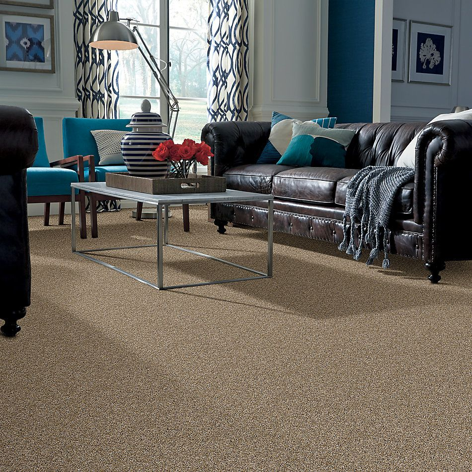 Shaw Floors Value Collections Absolutely It Net Camel 00201_5E093