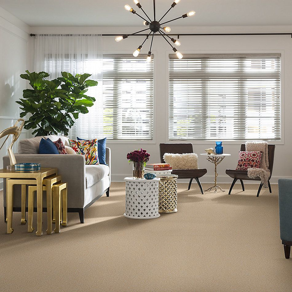 Shaw Floors Value Collections Sandy Hollow Cl II Net Marzipan 00201_5E510