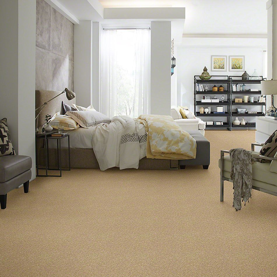 Shaw Floors Caress By Shaw Milford Sound Camel 00201_CCS33