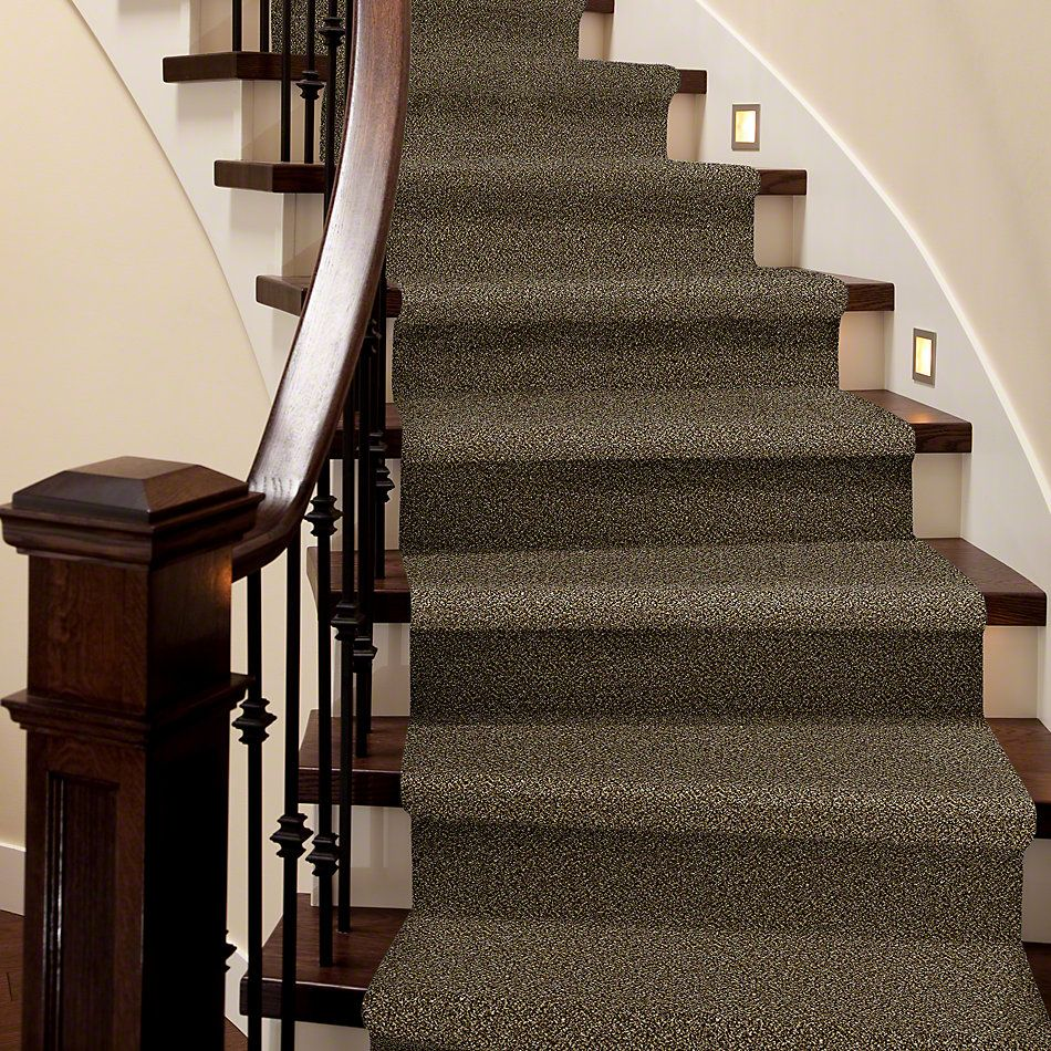 Shaw Floors Simply The Best Because We Can II 12′ Sandpiper 00201_E9187