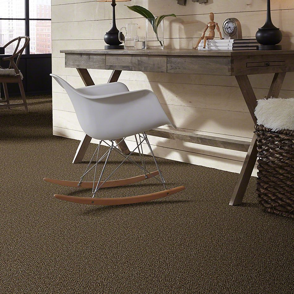 Shaw Floors Because We Can II 12′ Sandpiper 00201_E9187