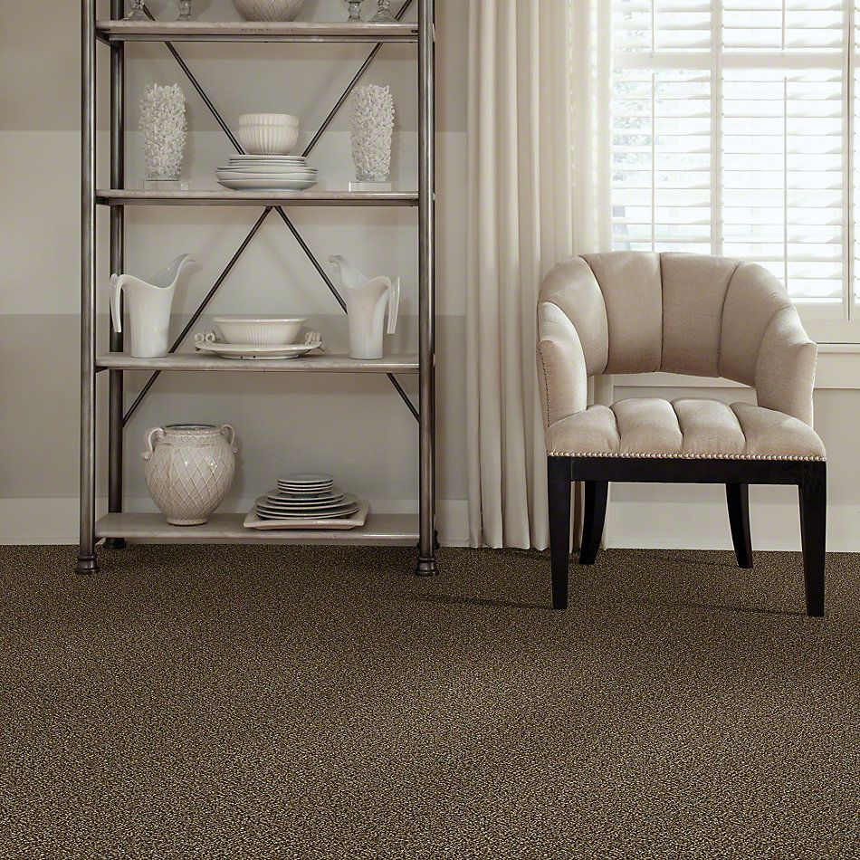 Shaw Floors Simply The Best Breaking Rules III Sandpiper NA446_00201