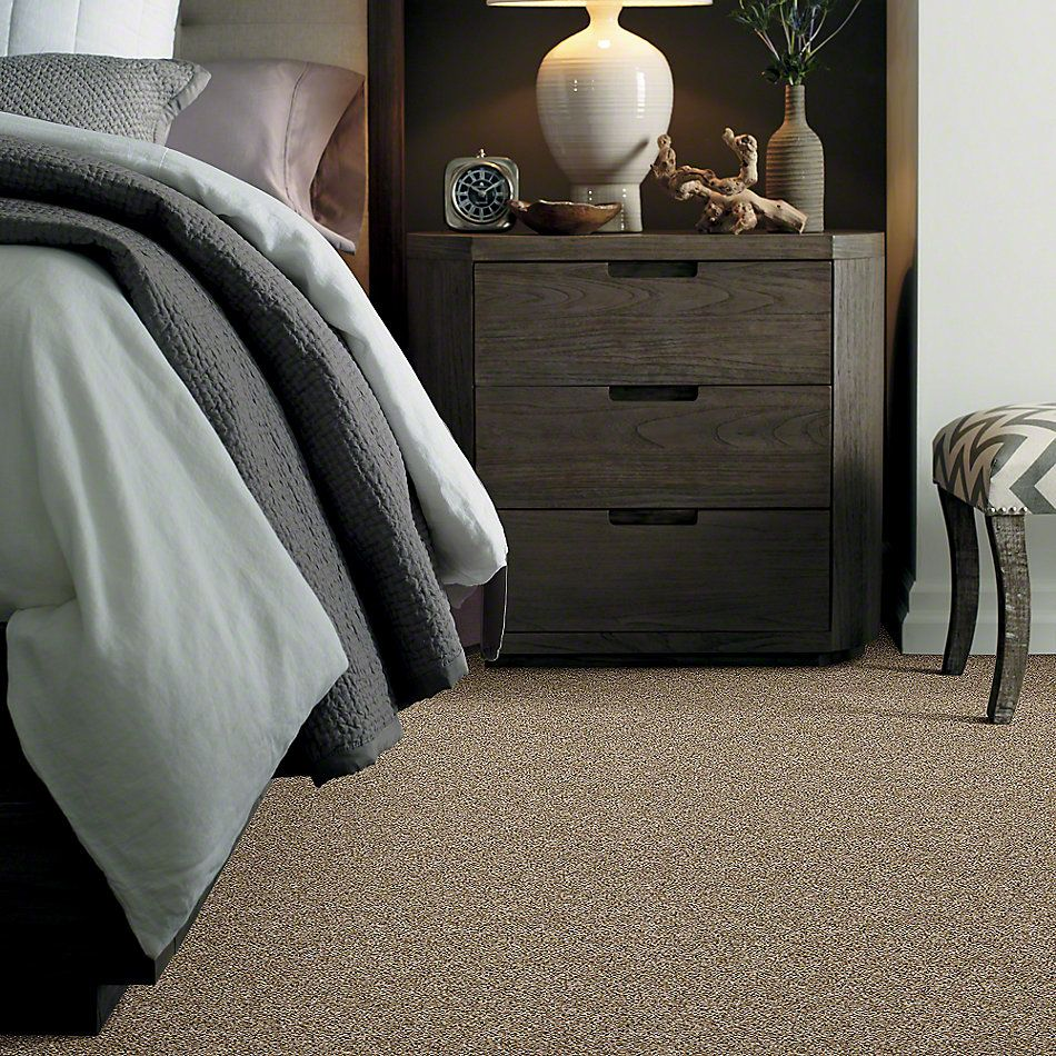 Shaw Floors Simply The Best Frosting Cork E9350_00201