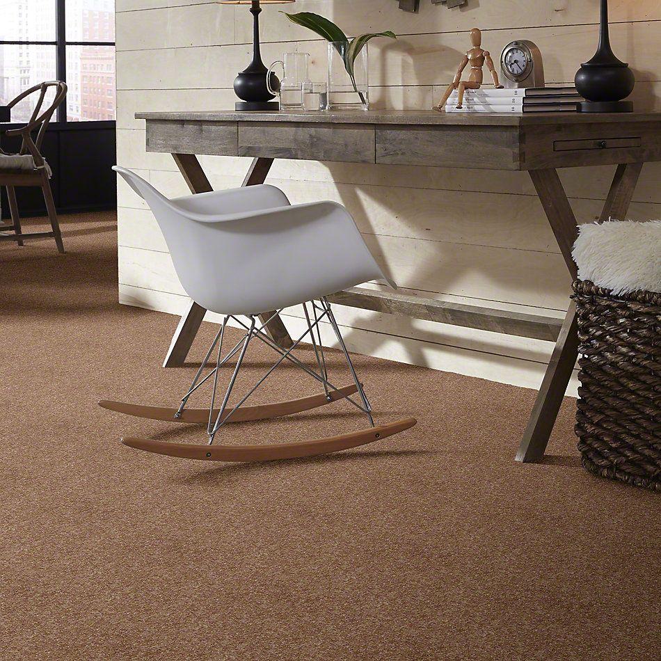 Shaw Floors Roll Special Xv540 Caramel Latte 00201_XV540