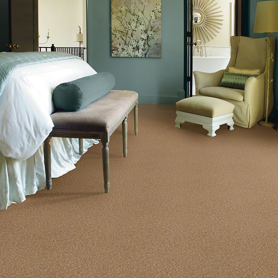 Shaw Floors Lonestar Filoli Honey 00201_E0113