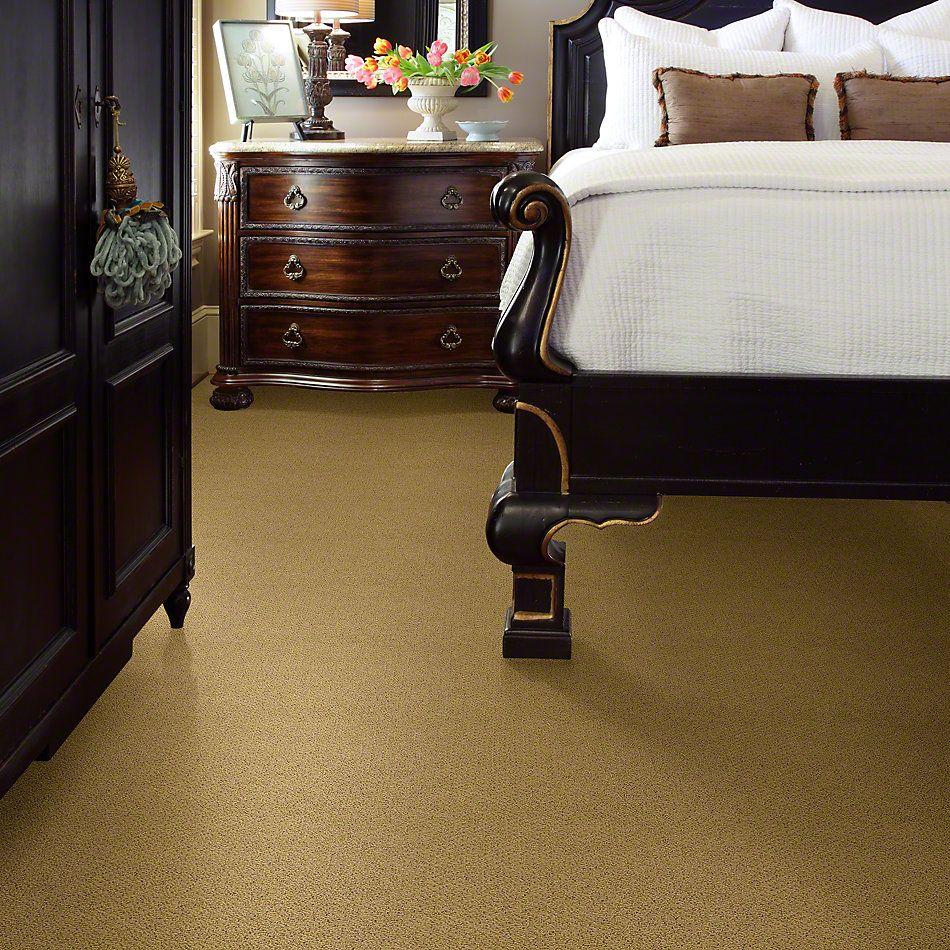 Shaw Floors Timeless Charm Loop Festival Gold 00201_E0405