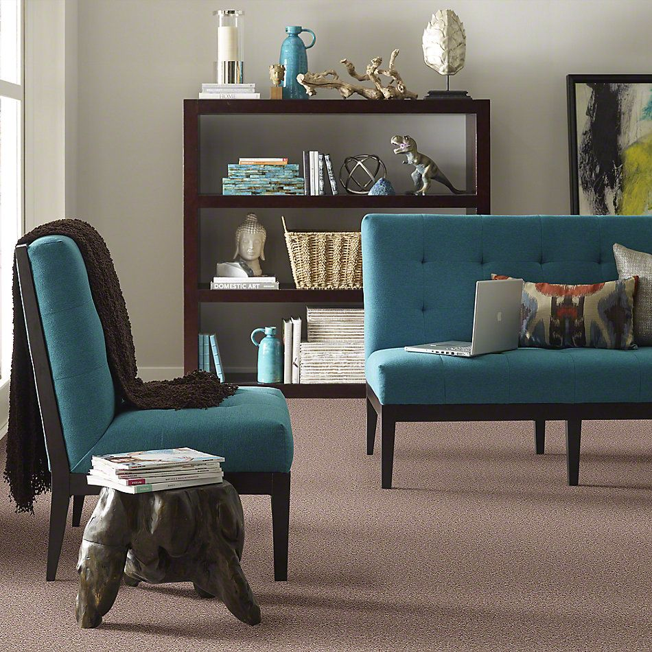 Shaw Floors Value Collections All Star Weekend III 15′ Net Honeycomb 00201_E0816