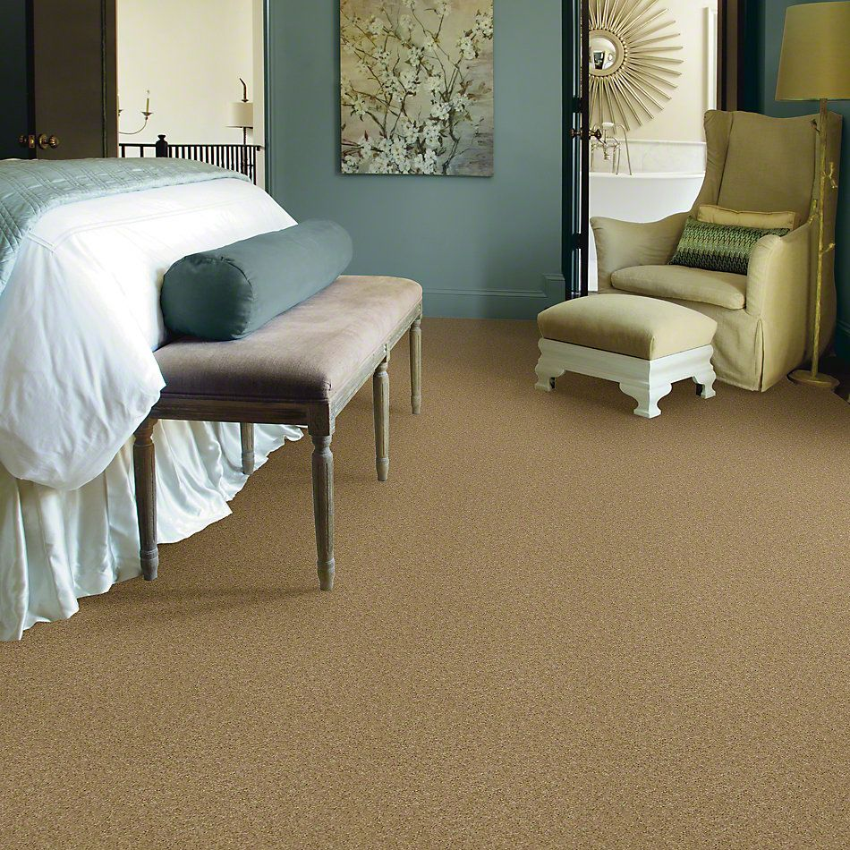 Shaw Floors Value Collections Keep Me II Net Camel 00201_E0890