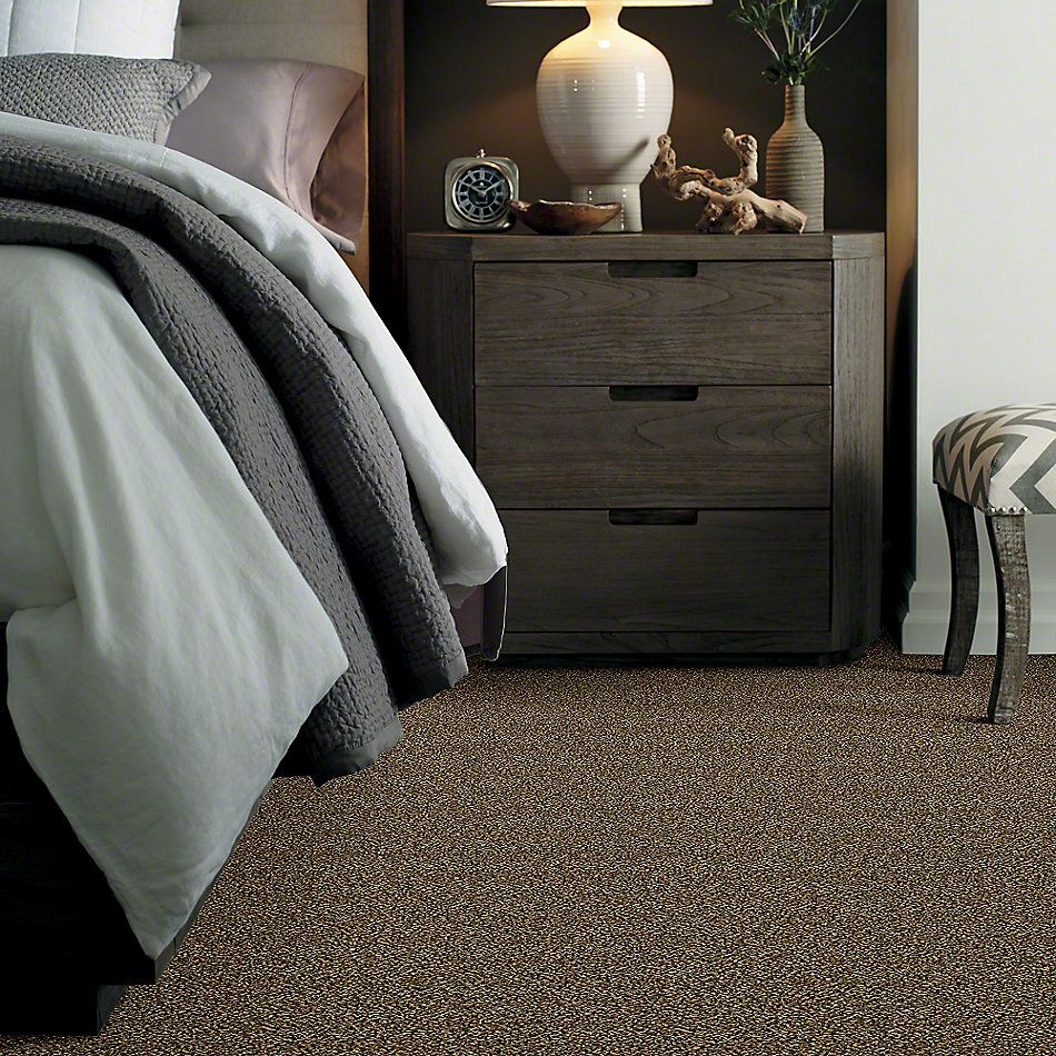 Shaw Floors Value Collections Because We Can II 12′ Net Sandpiper 00201_E9314