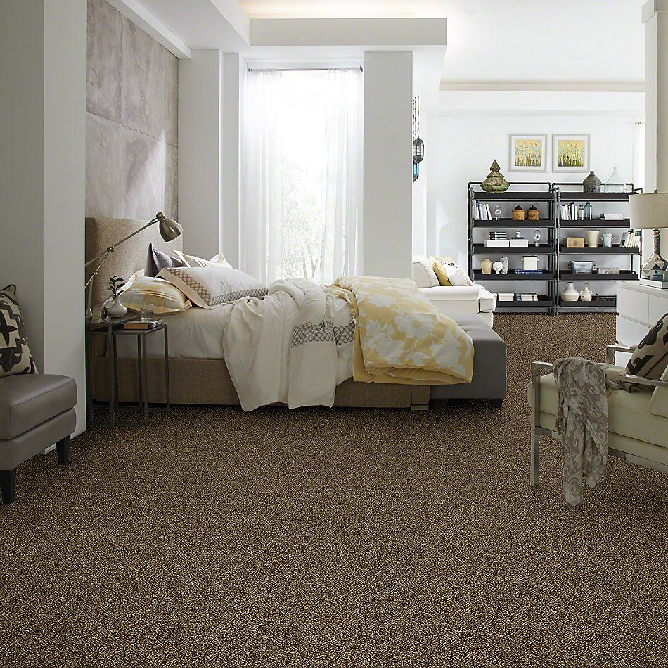 Shaw Floors Value Collections Because We Can II 15′ Net Sandpiper 00201_E9315