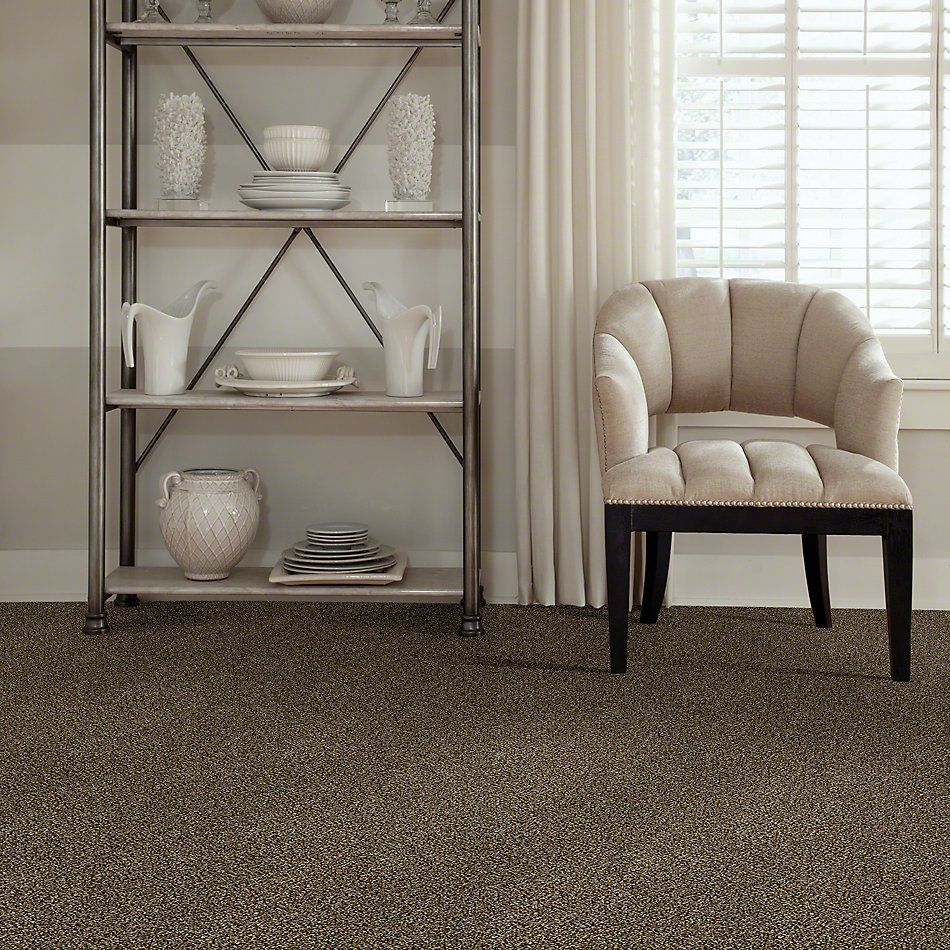 Shaw Floors Value Collections Because We Can III 12′ Net Sandpiper 00201_E9316
