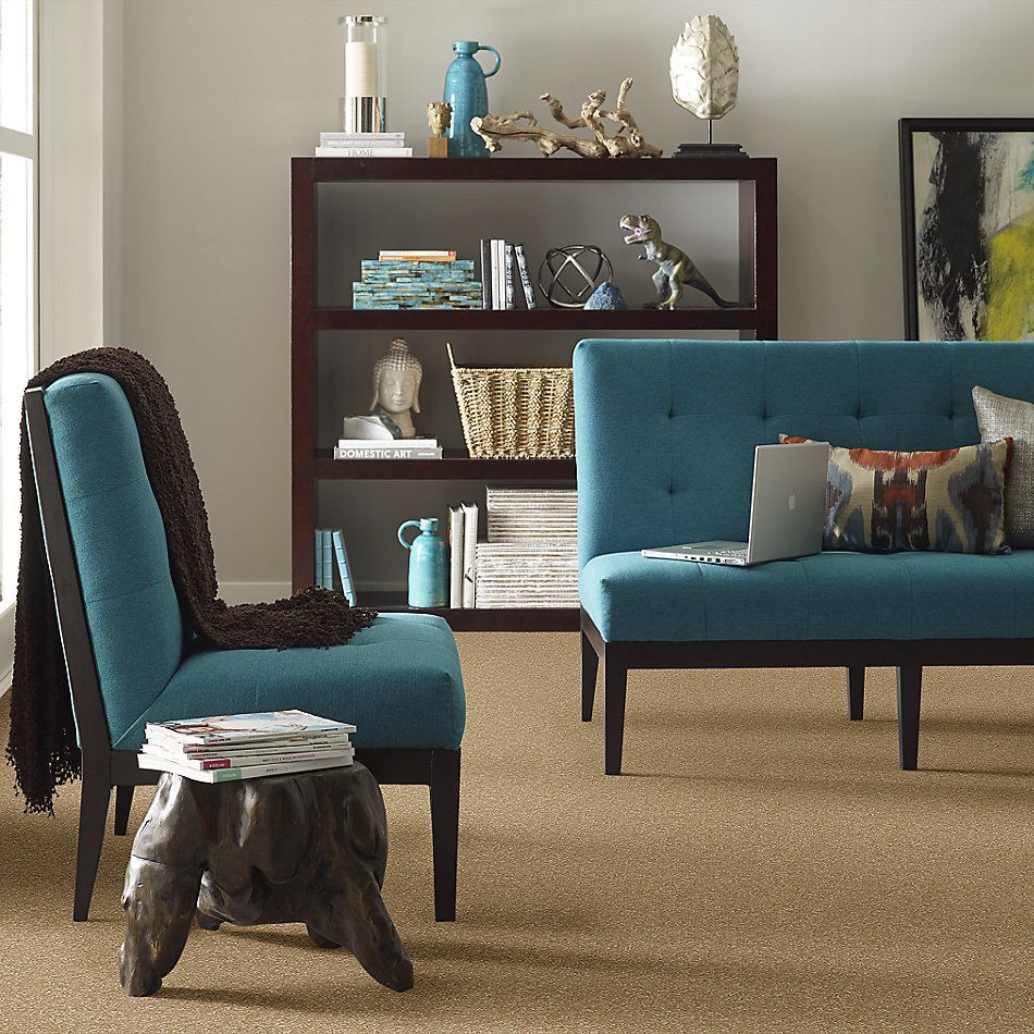 Shaw Floors Value Collections Passageway 3 Net Straw Hat 00201_E9377