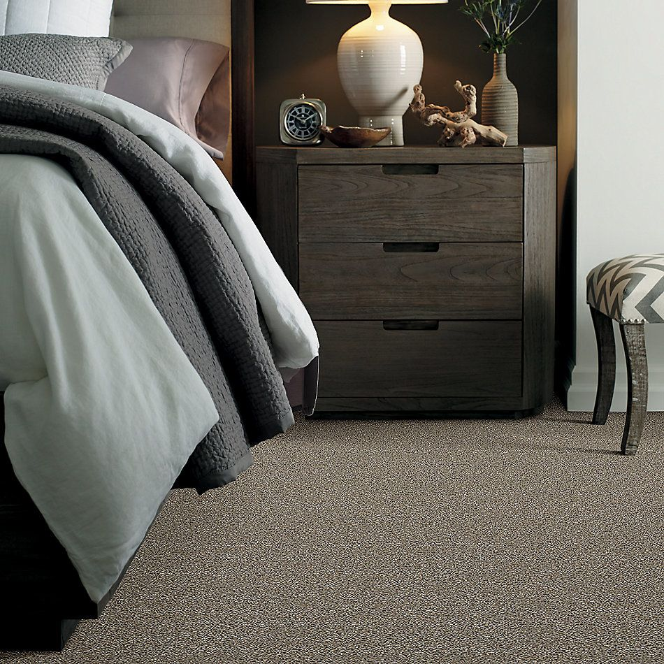 Shaw Floors Value Collections Breathe & Reflect Net Champion 00201_EA720