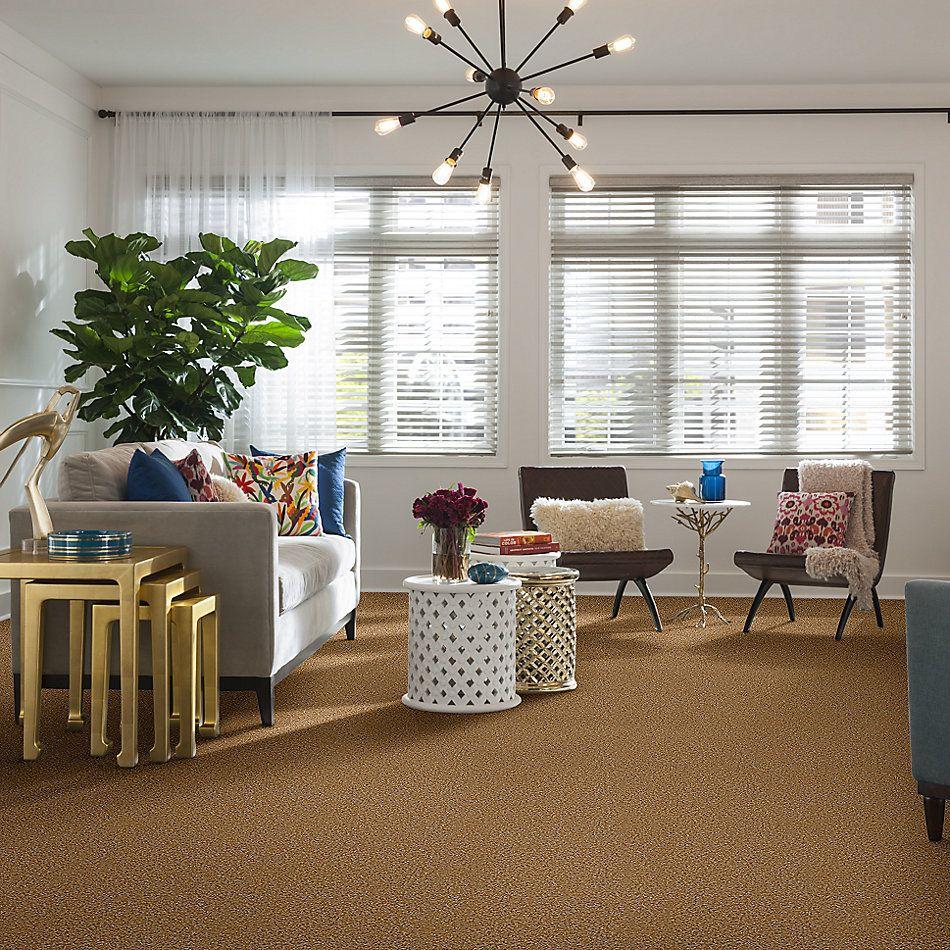 Shaw Floors Energize Wheat Field 00201_Q3884