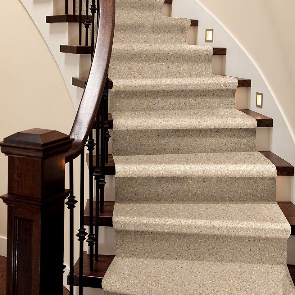 Shaw Floors Anso Premier Dealer Great Effect II 12′ Marzipan 00201_Q4329
