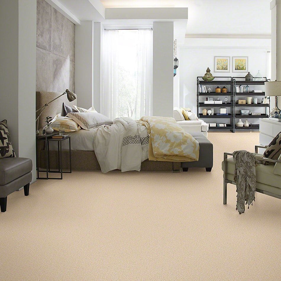 Shaw Floors Anso Premier Dealer Great Effect III 15′ Marzipan 00201_Q4332