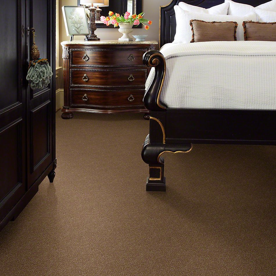 Shaw Floors Roll Special Xv410 Gingersnaps 00201_XV410