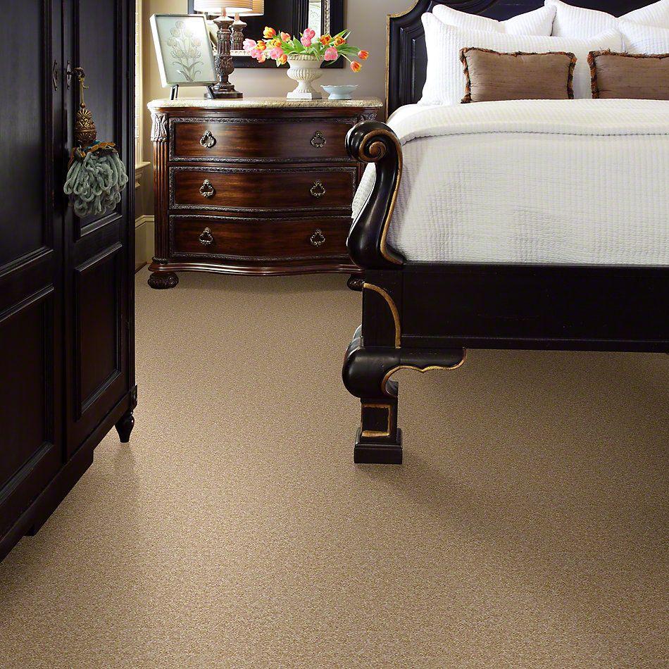 Shaw Floors Roll Special Xv543 Luminary 00201_XV543