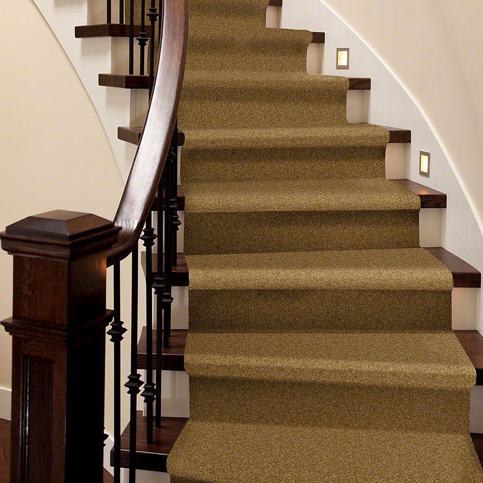 Shaw Floors Shaw Flooring Gallery Highland Cove II 12 Golden Rod 00202_5221G