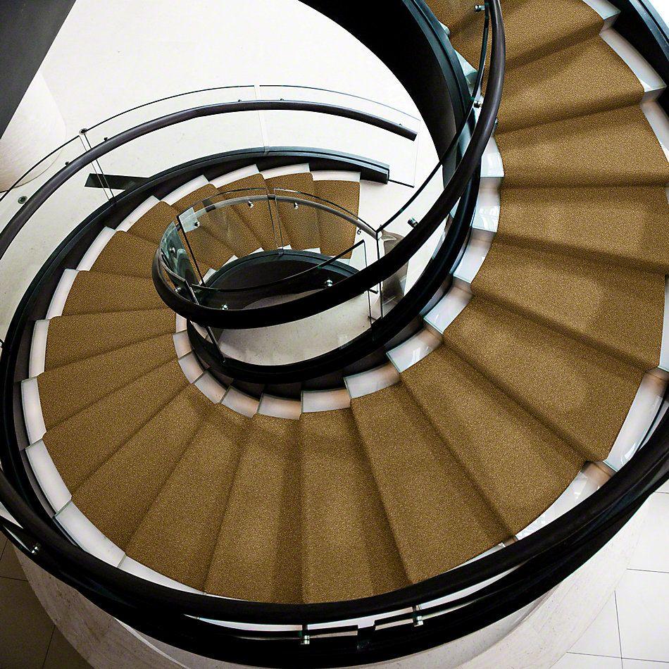 Shaw Floors Shaw Flooring Gallery Highland Cove III 15 Golden Rod 00202_5224G